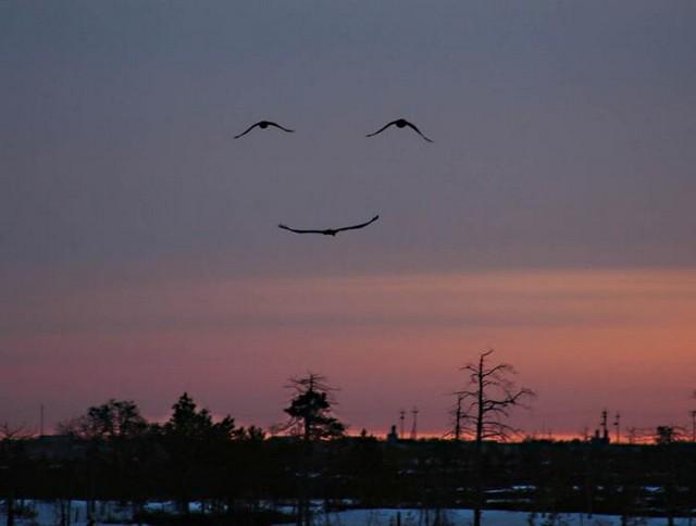 Glimlach van God
